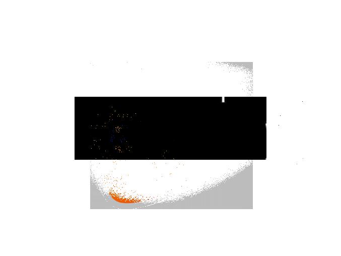 Fomia